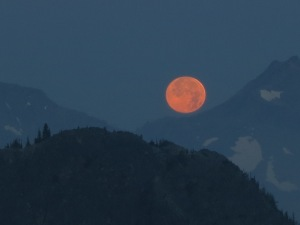 Super Moon setting at dawn